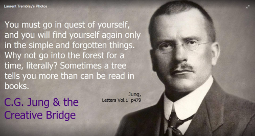 Jung Trees